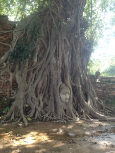 Beheaded statues and ruins line the destructed ancient kingdom of Ayutthaya