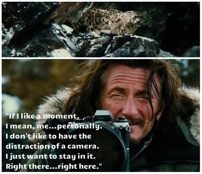 quote from the secret life of walter mitty